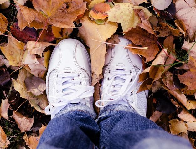 Sapatas brancas do esporte nas folhas de outono. fundo de outono Foto Premium