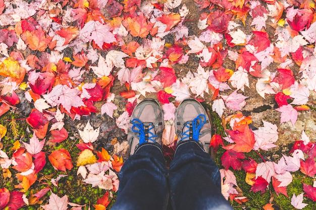 Sapatos de caminhada com folhas vermelhas ao redor Foto Premium