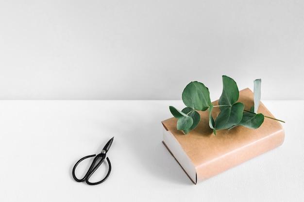 Scissor e livro e galho na mesa branca contra pano de fundo cinzento Foto gratuita