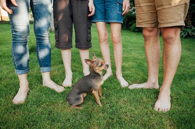 Seção baixa da família com seu animal de estimação na grama no parque Foto gratuita