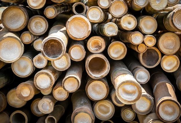 Seção transversal do círculo de bambu Foto Premium