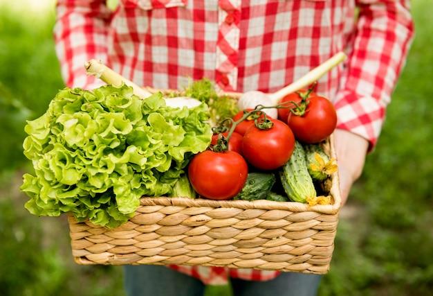 Segurando o balde com tomate e pepino Foto gratuita