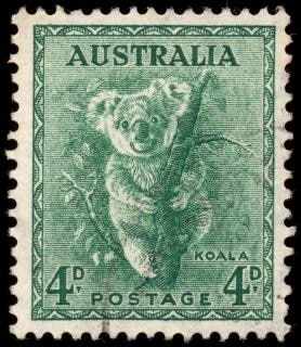 Selo verde koala Foto gratuita