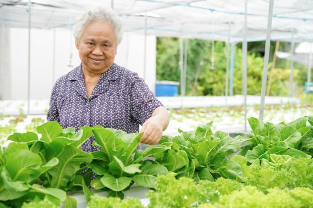 Senhora superior asiática que mantem o vegetal do carvalho verde e vermelho. Foto Premium