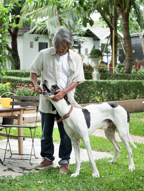 Sênior que joga com o cão grande em seu jardim home. Foto Premium
