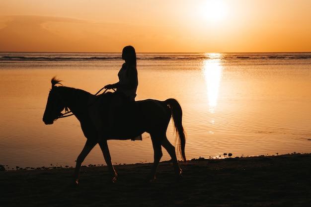Silhueta de mulher jovem, montando a cavalo na praia durante o pôr do sol colorido dourado perto do mar Foto gratuita