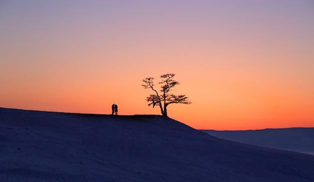 Silhueta dos pares sob a árvore grande no por do sol no lago baikal, ilha de olkhon, sibéria em rússia. inverno. amar e relaxar o conceito Foto Premium