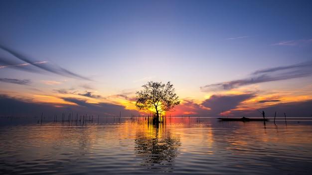 Silueta, de, pescador, em, bote, com, mangue, árvore, em, lago, ligado, amanhecer, em, pakpra, vila, phatthalung, tailandia Foto Premium