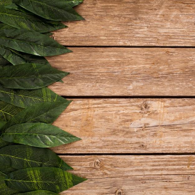 Sobrecarga de fundo de pranchas de madeira com folhas de fronteira e cópia espaço Foto gratuita