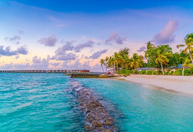 Cabana de praia vetores e fotos baixar gratis for Foto paesaggi naturali gratis