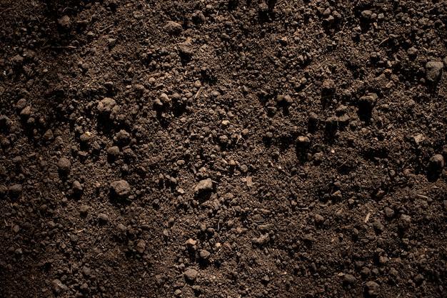 Solo de barro fértil adequado para o plantio. Foto Premium