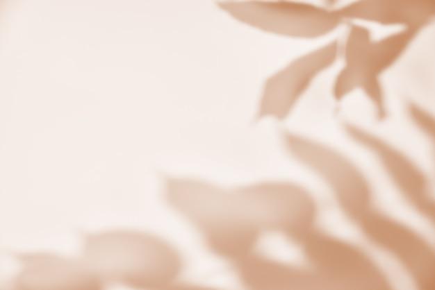 Sombra da folha em fundo pastel. fundo abstrato criativo. padrão de sombra da natureza Foto Premium