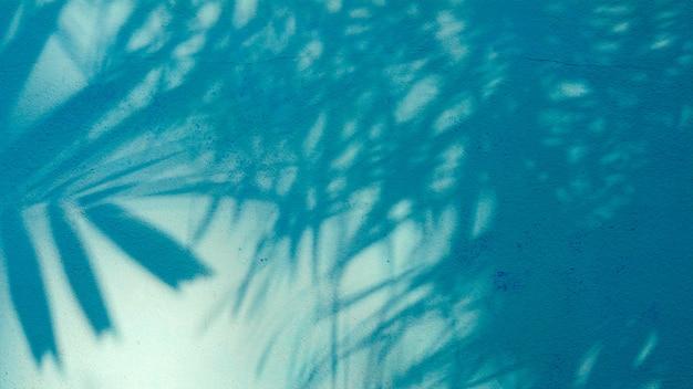Sombra de folhas de palmeira na parede de cimento azul Foto Premium