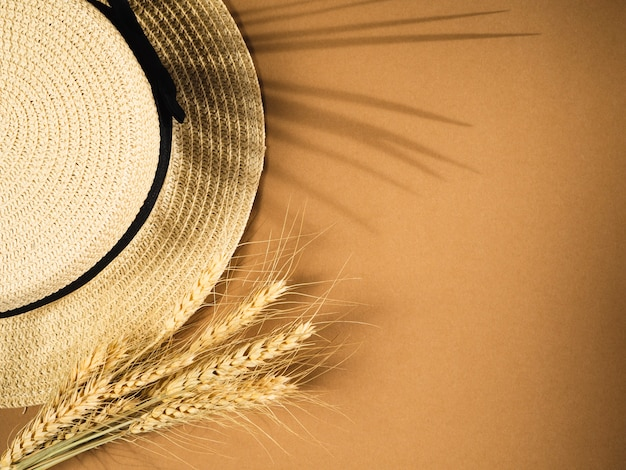 Sombras em folha de palmeira em um fundo Foto Premium