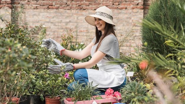 Sorrindo, jardineiro fêmea, examinando, plantas, em, estufa Foto gratuita