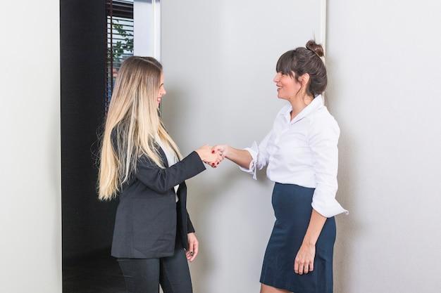 Sorrindo jovem empresária agitando o outro tinha Foto gratuita