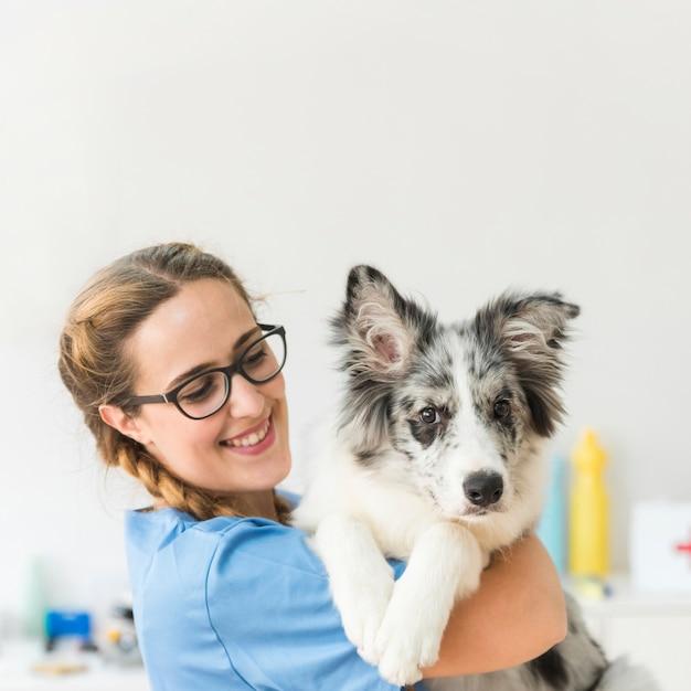 Sorrindo, jovem, femininas, veterinário, com, cão, em, clínica Foto gratuita