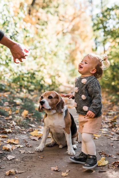 Sorrindo, menina, olhar, pessoa, mão, alimentação, beagle, cão Foto gratuita