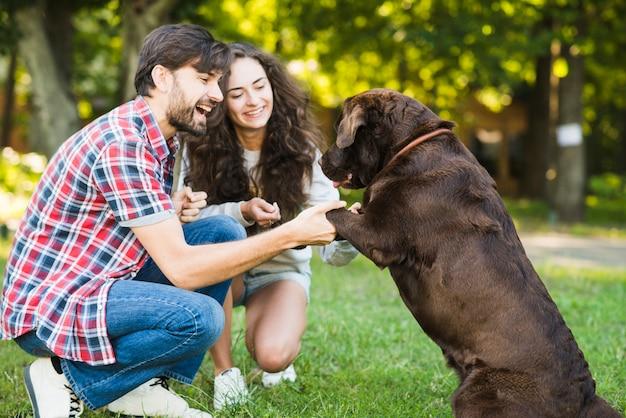 Sorrindo, par jovem, tendo divertimento, com, seu, cão, parque Foto gratuita
