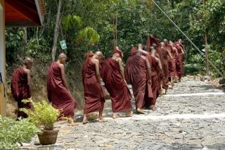 Sri lanka monges Foto gratuita