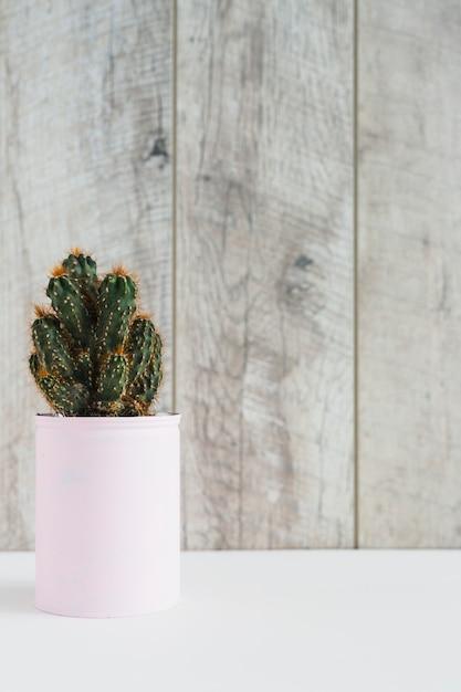 Suculenta planta em recipiente pintado de rosa na mesa branca contra a parede de madeira Foto gratuita