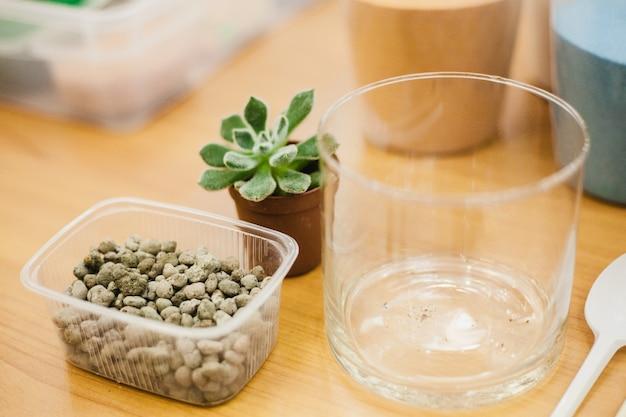Suculentas, plantas e ferramentas de plantio de plantas Foto Premium