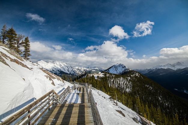 Sulpher mountain em banff, alberta, no canadá Foto Premium