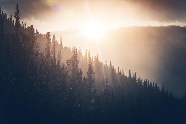 Sunny winter hills Foto gratuita