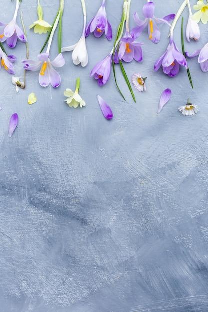 Superfície cinza e branca com borda roxa e branca de flores primaveris e espaço para texto Foto gratuita