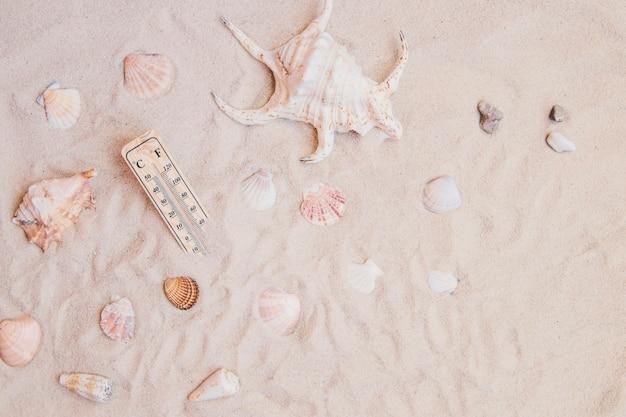 Superfície de areia com conchas e termômetro Foto gratuita