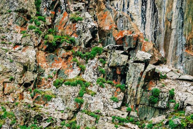 Superfície de montanha rochosa laranja musgosa em camadas com rica vegetação das terras altas. plantas, musgos e líquenes no penhasco. textura detalhada da montanha com espaço de cópia. rocha texturizada com hortaliças. Foto Premium