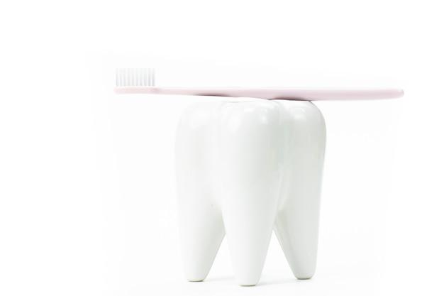 Suporte de escova de dentes em forma de dente molar primário com escova de dentes Foto Premium