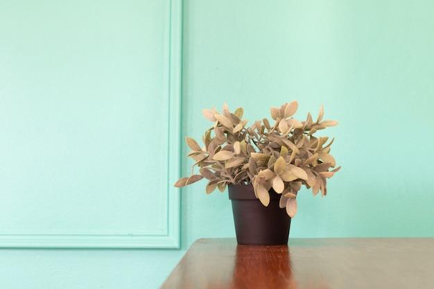 Tabela de madeira com o potenciômetro da planta na parede verde. Foto Premium