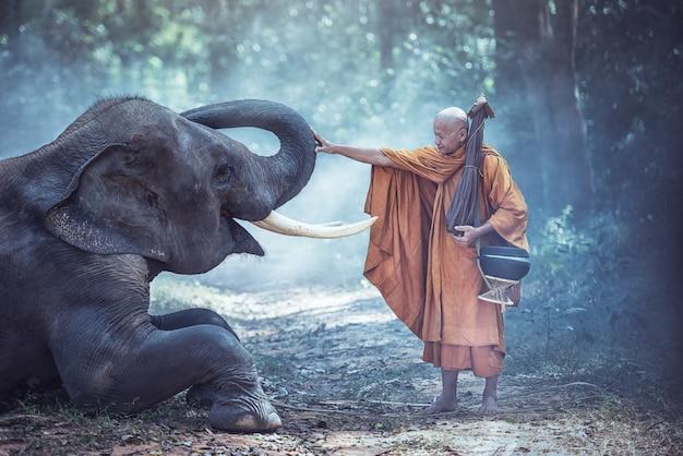 Tailândia monges budistas com elefante é tradicional da religião budismo na fé tailandeses Foto Premium