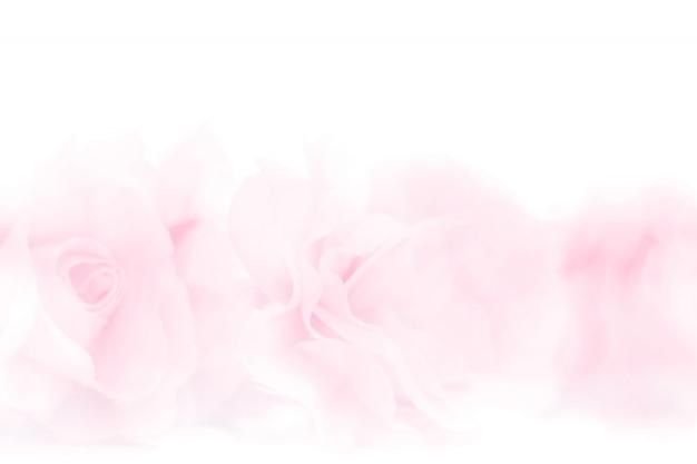 Tecido de flores rosas coloridas feito com gradiente de fundo Foto Premium