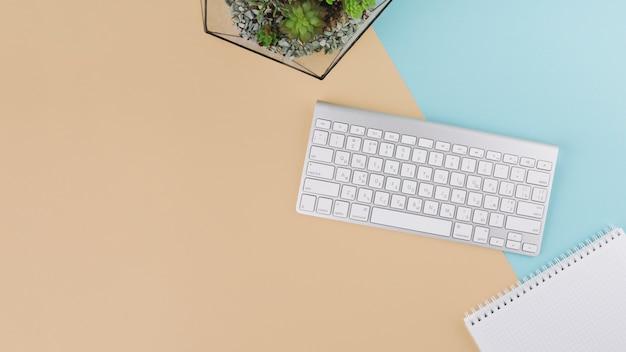 Teclado com notebook e planta Foto gratuita