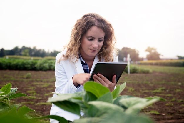 Tecnóloga agrônoma feminina com computador tablet em campo, verificando a qualidade e o crescimento das safras para a agricultura Foto gratuita