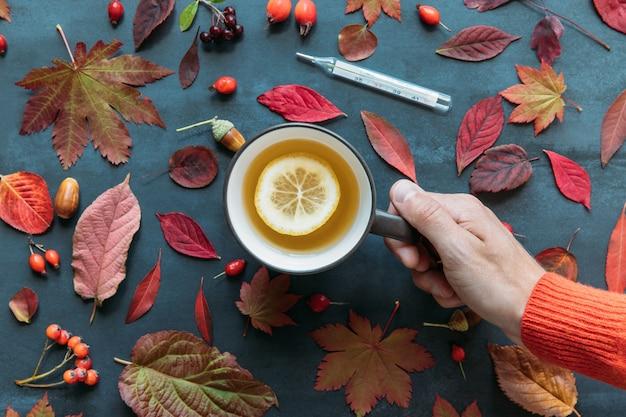 Temporada de gripe, conceito de frio. vista superior na mão masculina segurando uma xícara de chá quente com limão, folhas coloridas de outono, roseira brava, bagas de espinheiro e sorveira, termômetro digital, superfície azul marinho do grunge. Foto Premium
