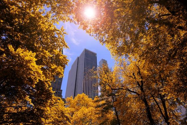 Temporada de outono com laranjeira vermelha folhas com construção sobre o céu Foto Premium