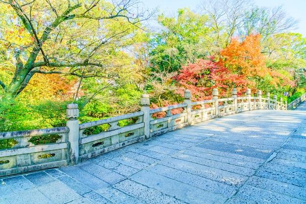 Temporada de outono no japão Foto gratuita