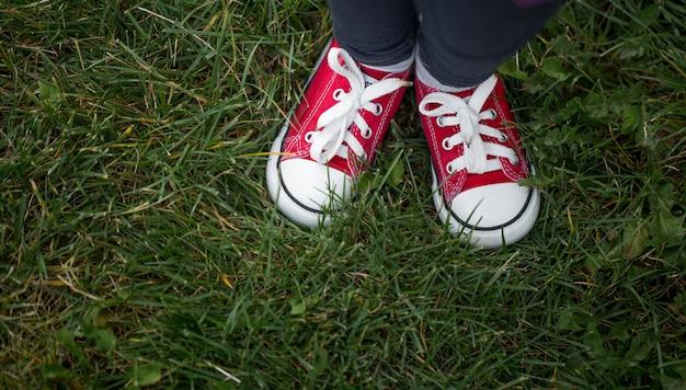 Tênis vermelho na grama verde, vista superior Foto Premium