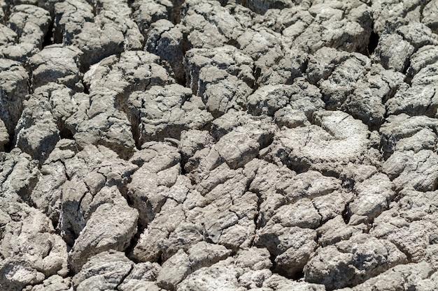 Terra rachada da textura na estação seca. Foto Premium