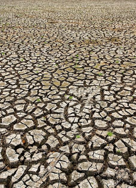 Terra seca rachada sem água Foto Premium