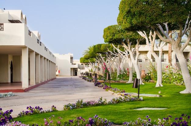 Território de parque bem-preparado de hotel de cinco estrelas. verão em sharm el sheikh. Foto Premium