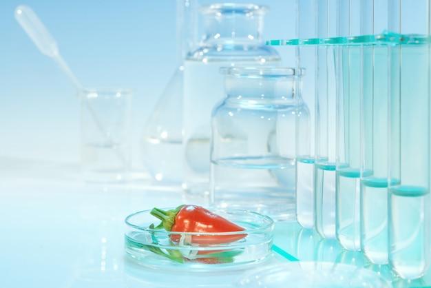 Teste de pimenta vermelha para contaminação química Foto Premium