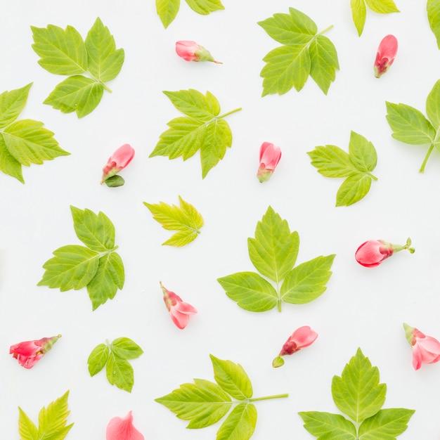 Teste padrão floral decorativo Foto gratuita