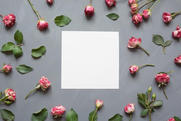 Teste padrão floral feito de rosas rosa arbusto, branco em branco, folhas verdes em cinza Foto Premium