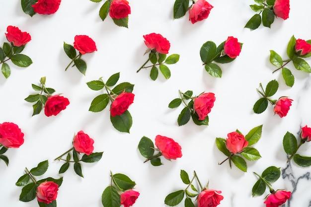Teste padrão floral sem costura feita de rosas vermelhas flores, folhas verdes, ramos Foto Premium