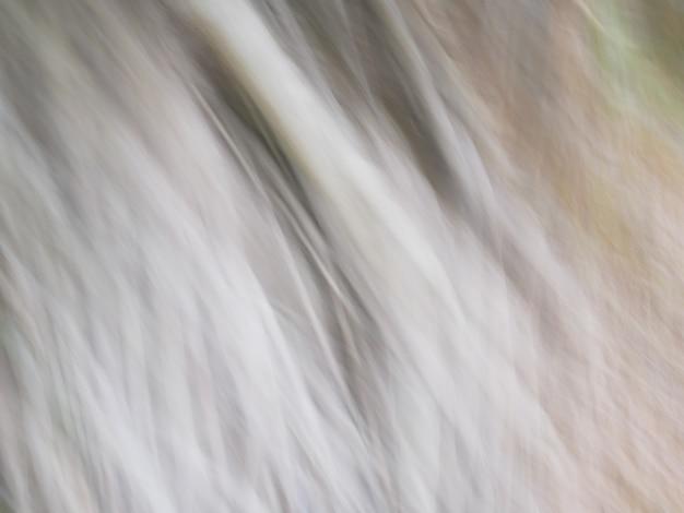 Textura abstrata de fundo, efeito panning, galho de raiz de árvore, castanho claro natural Foto Premium