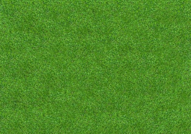 Textura da grama verde para o fundo. padrão de gramado verde e fundo de textura Foto Premium